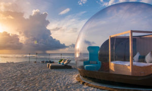 Bubble Glamping Domes